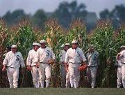 Field of Dreams - will they come?